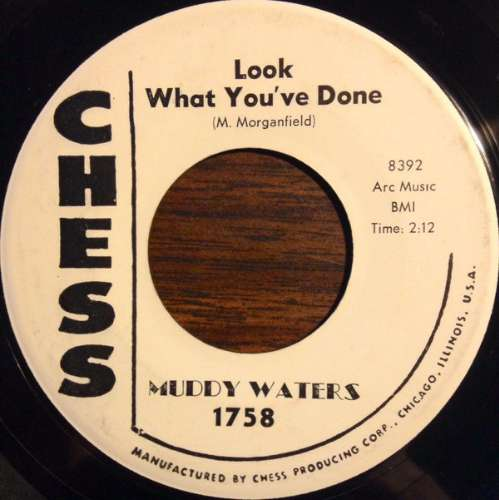 Muddy Waters - Look what you've done